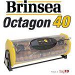 octagon 40 digitaal