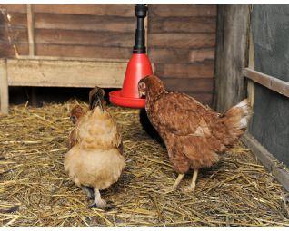 ronddrinker voor kippen