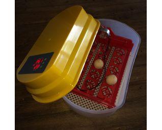 budget broedmachine 15 eieren binnenkant