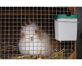 drinkbak met konijn
