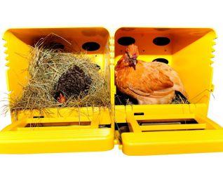 legnest chickbox geschakeld