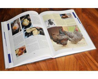 Boek kippenziekten en aandoeningen