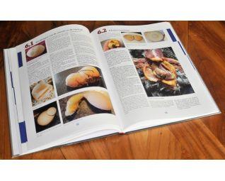 kippenziekten boek